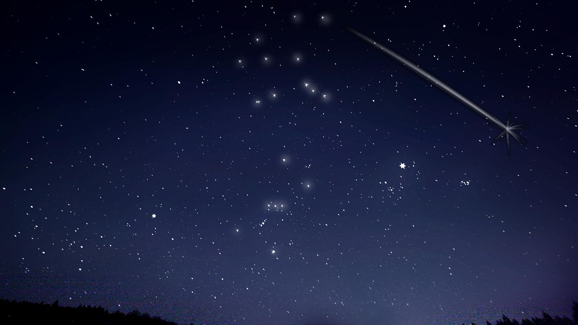 星の鑑賞会&夜景ツアー